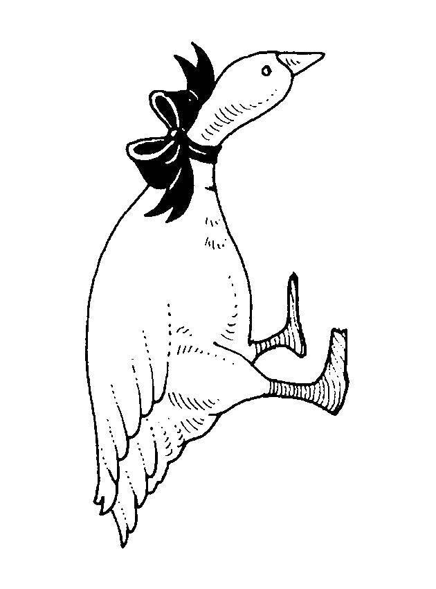 Раскраска Животные Скачать Птицы, петушок.  Распечатать ,как нарисовать поэтапно животных,