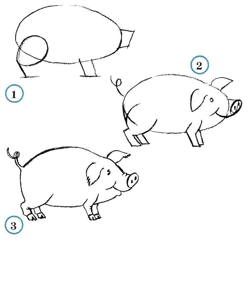 Раскраска как нарисовать поэтапно животных Скачать контру, слоненок, бивни, хобот.  Распечатать ,контуры слона для вырезания,