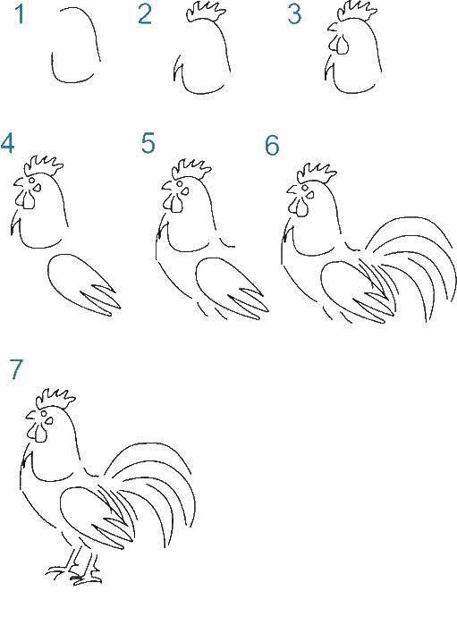 Раскраска Поэтапно рисуем петушка Скачать Птицы, петушок.  Распечатать ,как нарисовать поэтапно животных,
