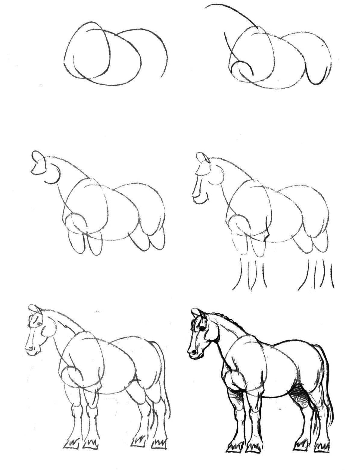 Раскраска Поэтапно рисуем коня Скачать Животные, конь.  Распечатать ,как нарисовать поэтапно карандашом,