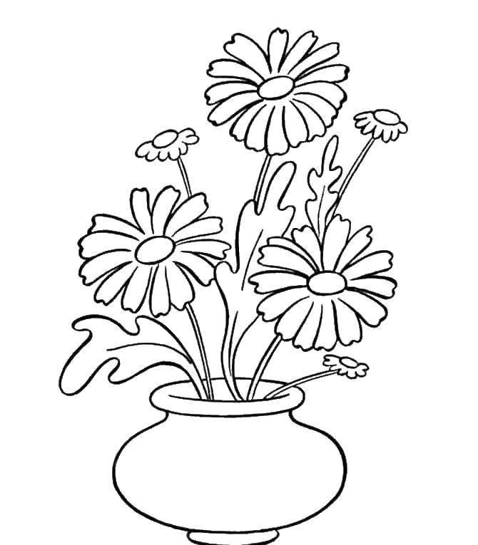 Раскраска Ромашки в вазе Скачать Цветы, букет, ваза.  Распечатать ,цветы,