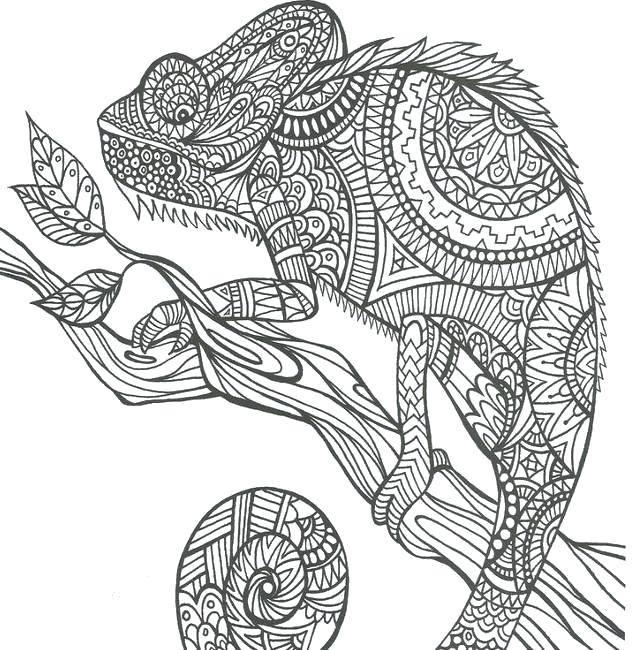Название: Раскраска Узорный хамелеон на ветке. Категория: узор. Теги: Рептилия, хамелеон.