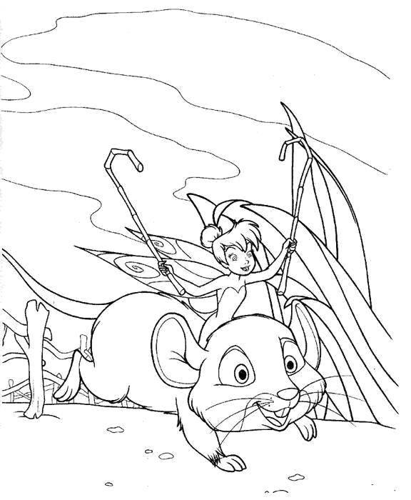 Раскраска Фея динь-динь на мышке Скачать Фея, лес, сказка.  Распечатать ,фея,