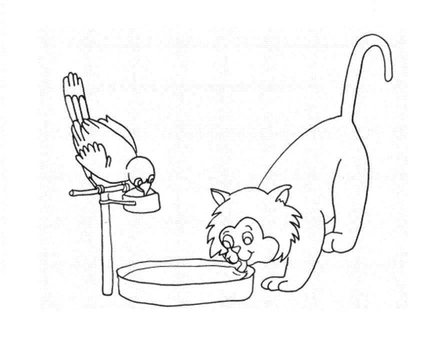 Раскраска котики Скачать Овощи.  Распечатать ,овощи,