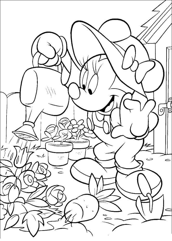 Раскраска Минни поливает цветочки в своём саду Скачать Дисней, Микки Маус, Минни Маус.  Распечатать ,микки маус,
