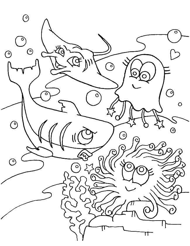 Раскраска морское Скачать кирби, мультики.  Распечатать ,Кирби,