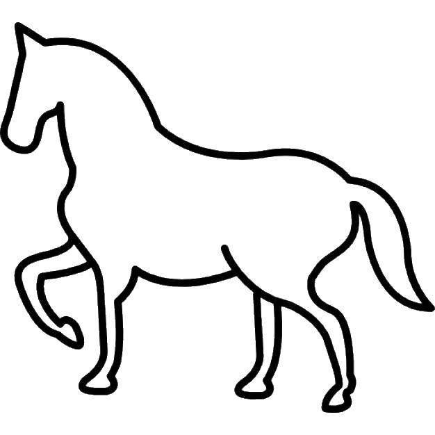 Раскраска контуры лошади Скачать Персонаж из мультфильма, Кунг Фу Панда.  Распечатать ,Персонаж из мультфильма,