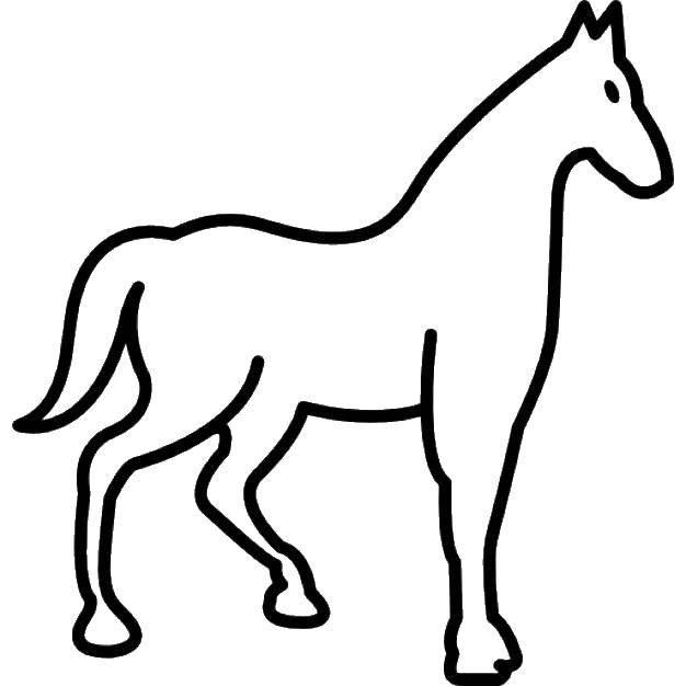 Раскраска контуры лошади Скачать ,коробка, подарок,.  Распечатать