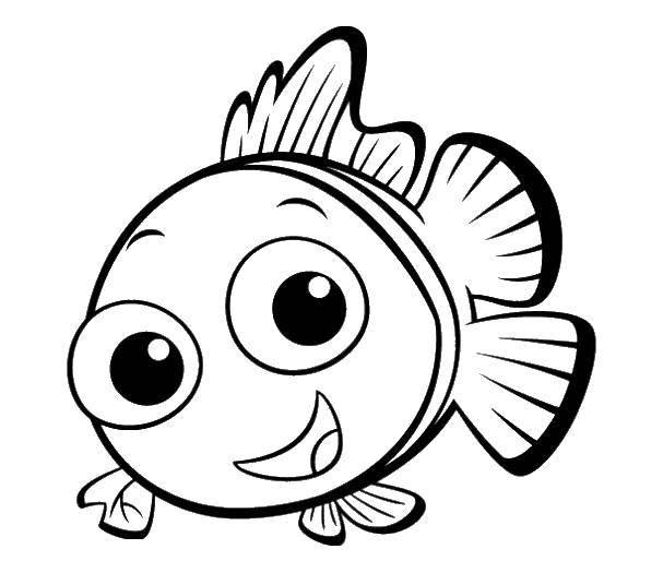 Раскраска Немо рыба клоун Скачать Немо, рыба, клоун.  Распечатать ,мультики,
