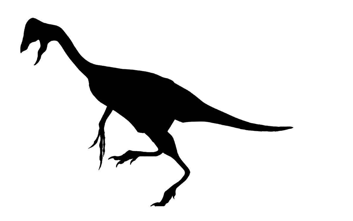 Раскраска динозавр Скачать Цифры, счёт, числа.  Распечатать ,Учимся считать,
