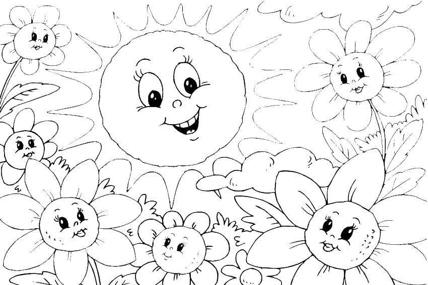Раскраска Солнце и цветы Скачать солнце, лето.  Распечатать ,Лето,