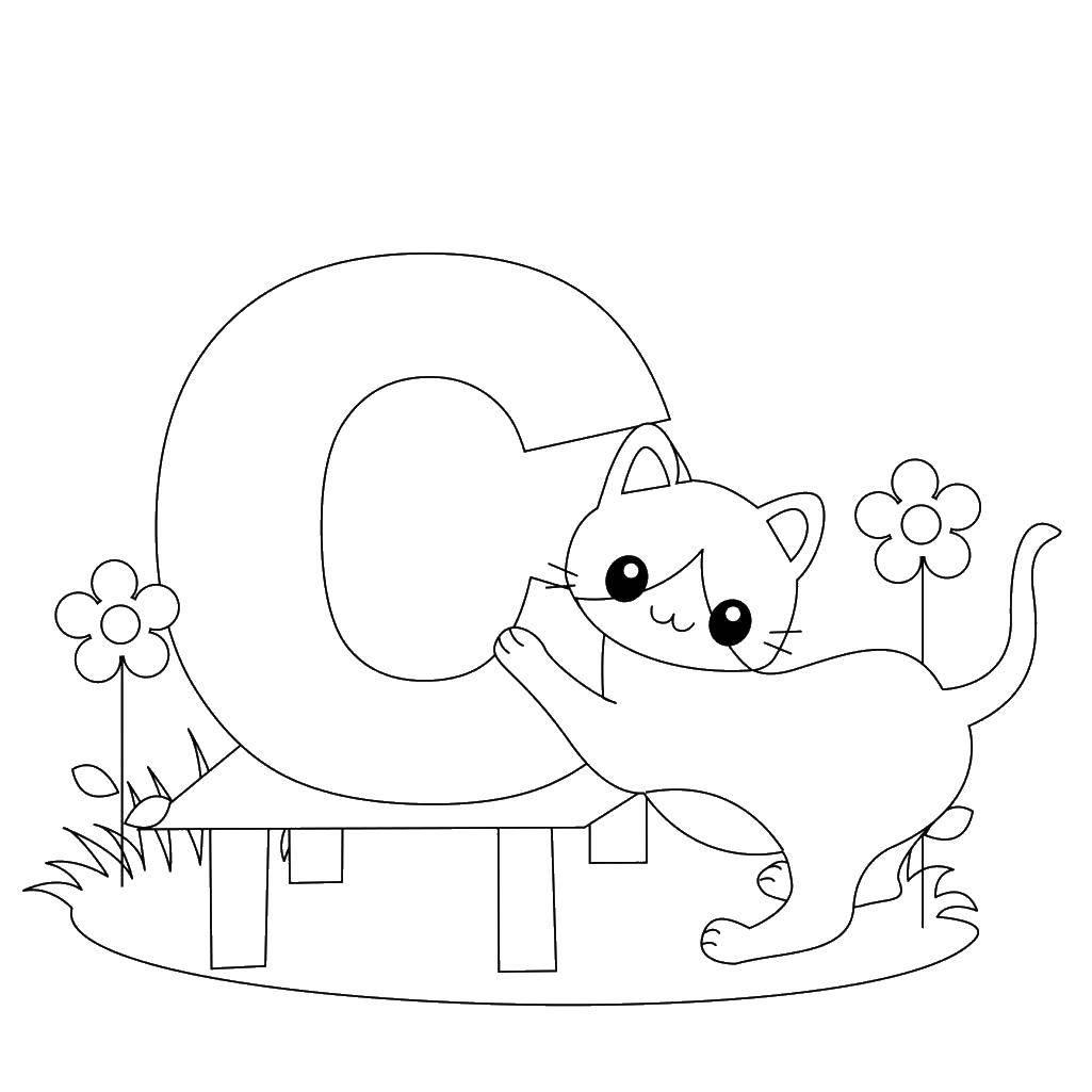 Раскраска Английский алфавит Скачать ,животные, котенок, кошка, крылья,.  Распечатать