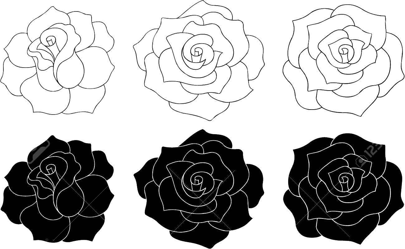 Раскраска Контуры розы Скачать принцессы, Дисней, портреты.  Распечатать ,Принцессы,