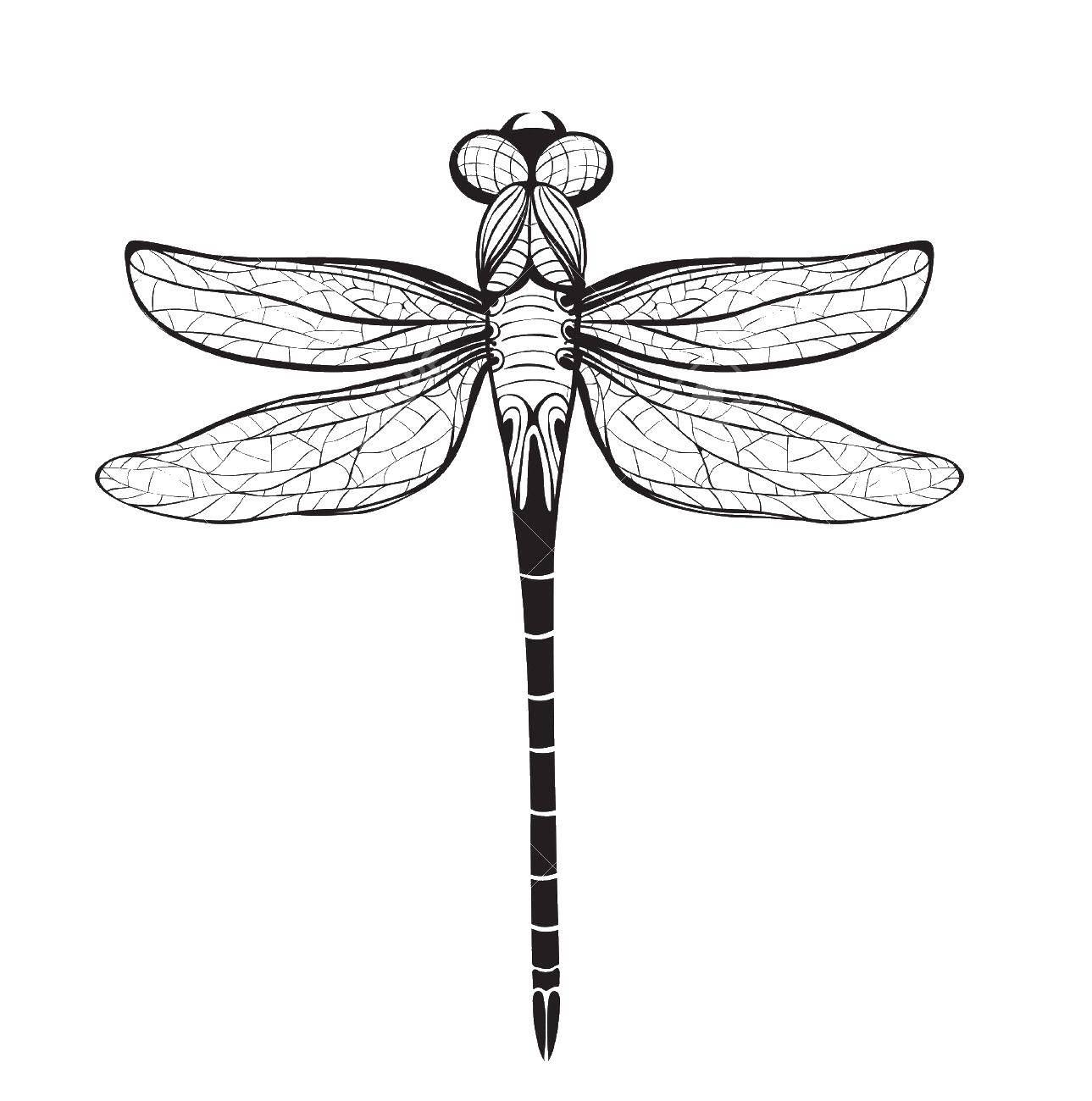 Раскраска Контуры насекомые Скачать майнкрафт, .  Распечатать ,майнкрафт,