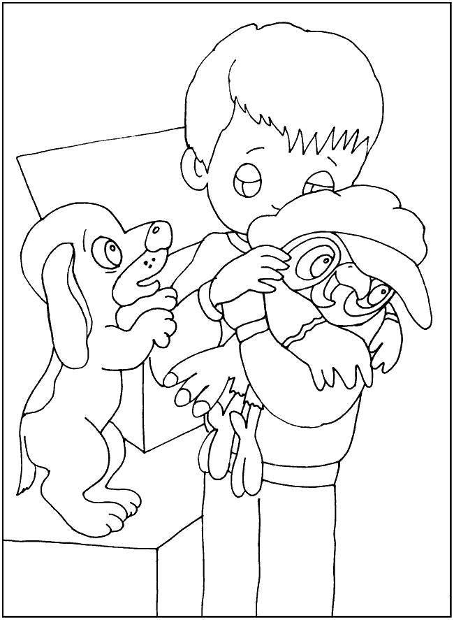 Раскраска Попугай кеша Скачать Персонаж из мультфильма, Попугай Кеша.  Распечатать ,раскраски попугай кеша,