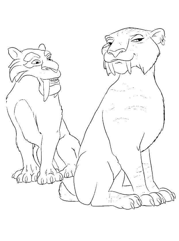Раскраска Диего и тигрица Скачать ,Ледниковый период, мультфильм,.  Распечатать