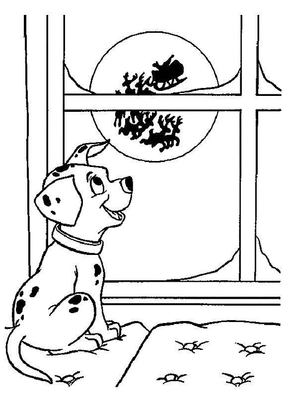 Раскраска Далматинец увидел санту Скачать ,101 далматинец, Дисней, мультфильм,.  Распечатать
