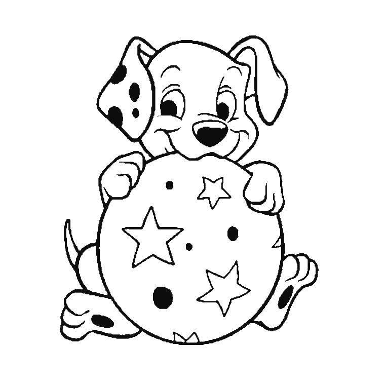 Раскраска Щенок с мячиком Скачать ,101, далматинцы,.  Распечатать