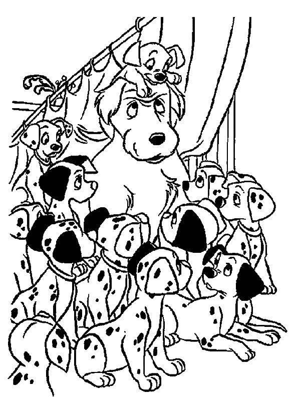 Название: Раскраска 101 далматинец. Категория: 101 далматинец. Теги: 101 далматинец, Дисней, мультфильм.