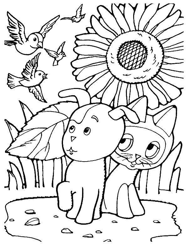 Раскраска Котенок по имени гав и собака Скачать ,котенок гав,.  Распечатать
