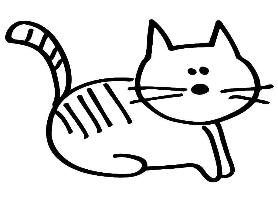 Раскраска Кошка Скачать Лабиринт, логика.  Распечатать ,лабиринты,