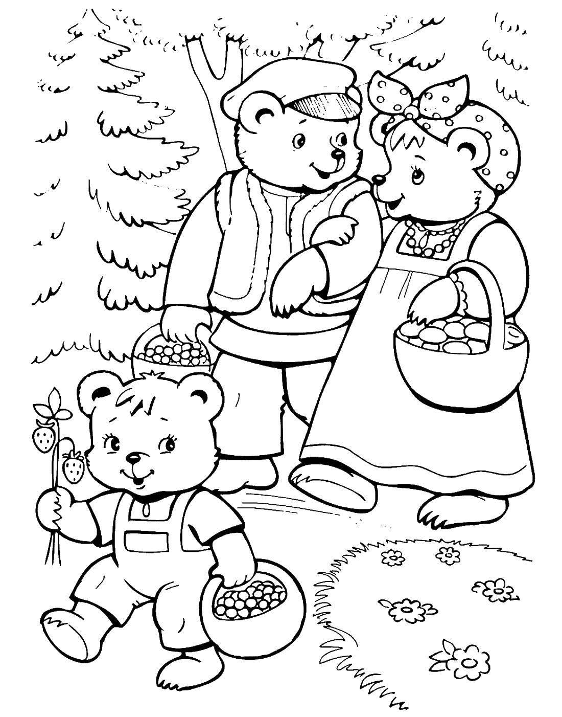 Раскраска Медведи гуляют в лесу Скачать три медведя.  Распечатать ,три медведя,