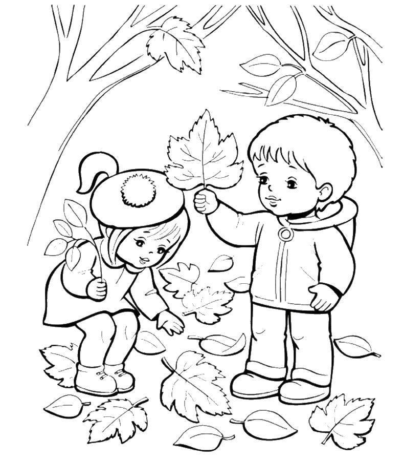 Раскраска Осень Скачать Птицы, ласточка.  Распечатать ,птицы,