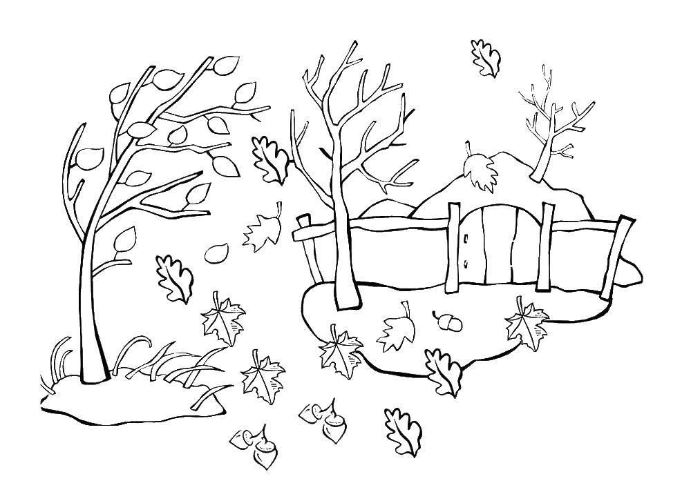 раскраски ветер раскраска ветер сдувает листья осень