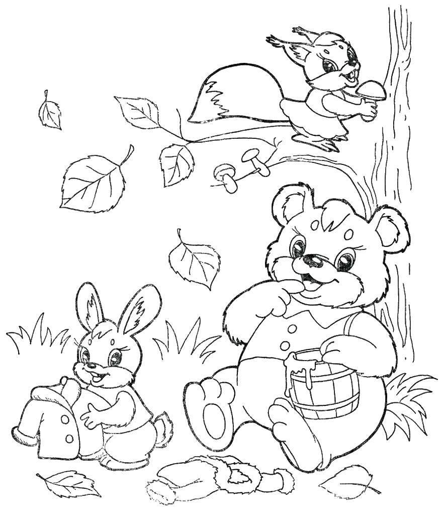 Раскраска Животные в лесу готовятся к зиме Скачать животные, зима.  Распечатать ,осень,