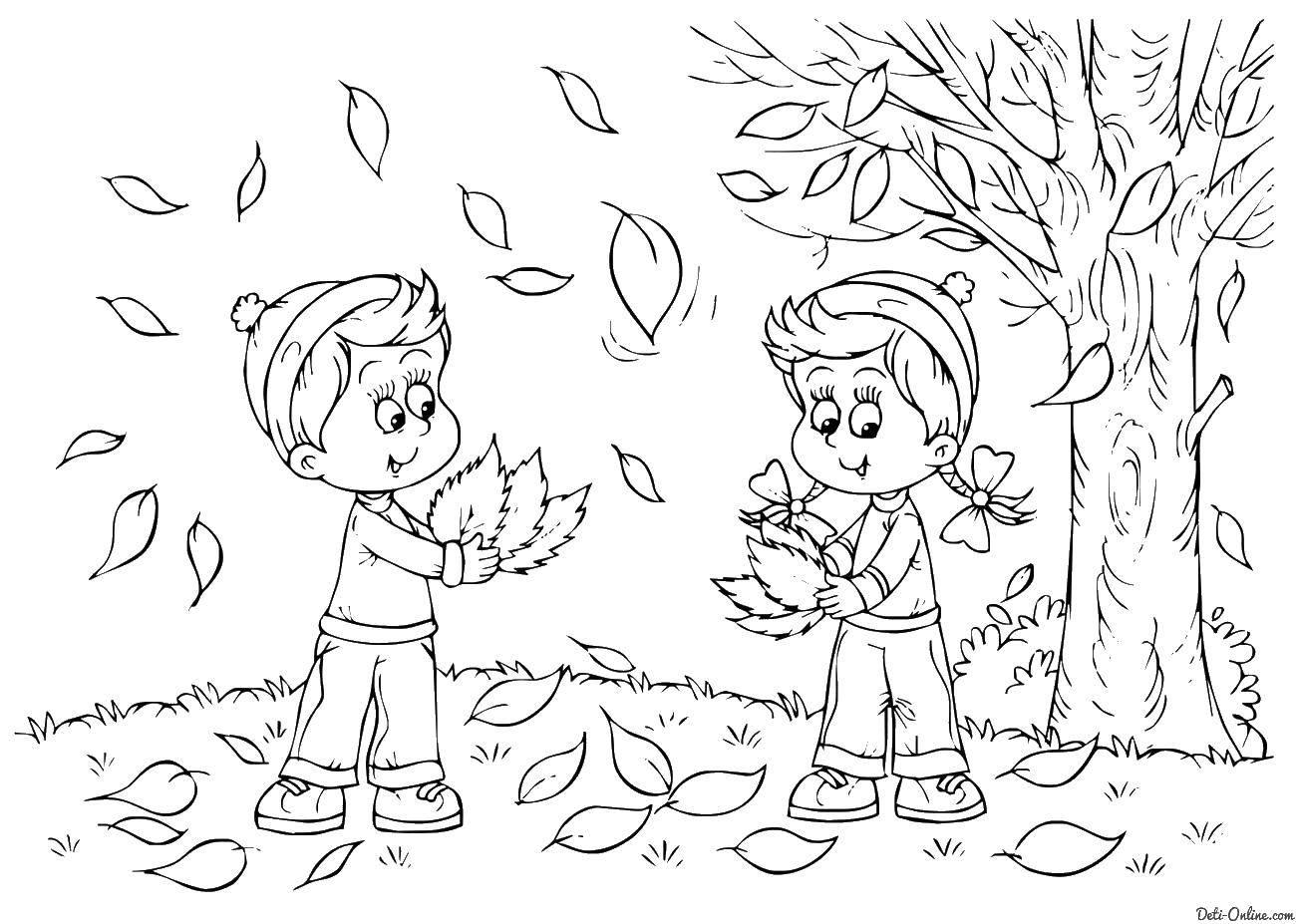 Раскраска Осень Скачать Свинья, поросенок.  Распечатать ,домашние животные,