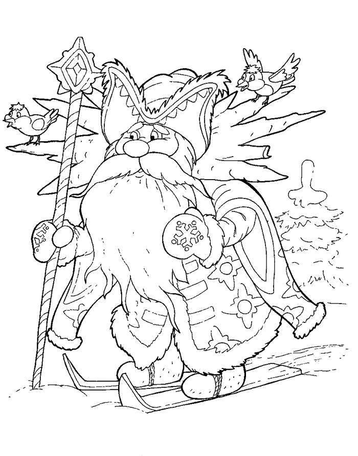 Раскраска Дед мороз на лыжах Скачать Спорт, лыжи.  Распечатать ,лыжи,