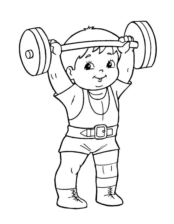 Раскраска спорт Скачать ,медведи,бита, мяч, дерево,.  Распечатать