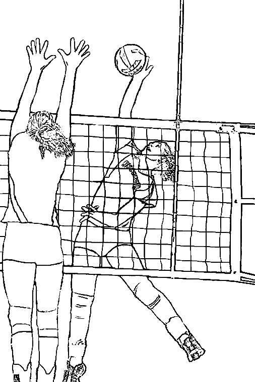 Раскраска Девочки играют в волейбол Скачать волейбол, спорт, мяч.  Распечатать ,волейбол,