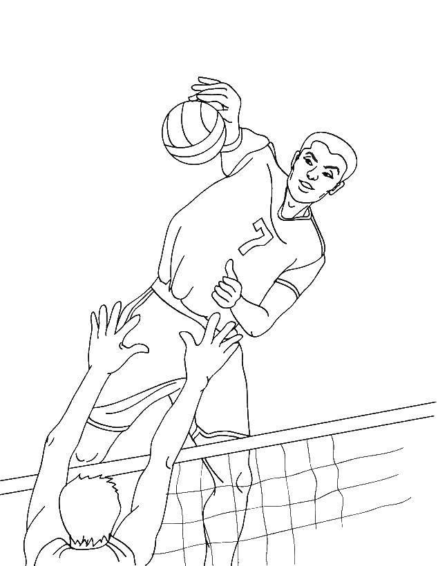 Раскраски волейбол, poisk.