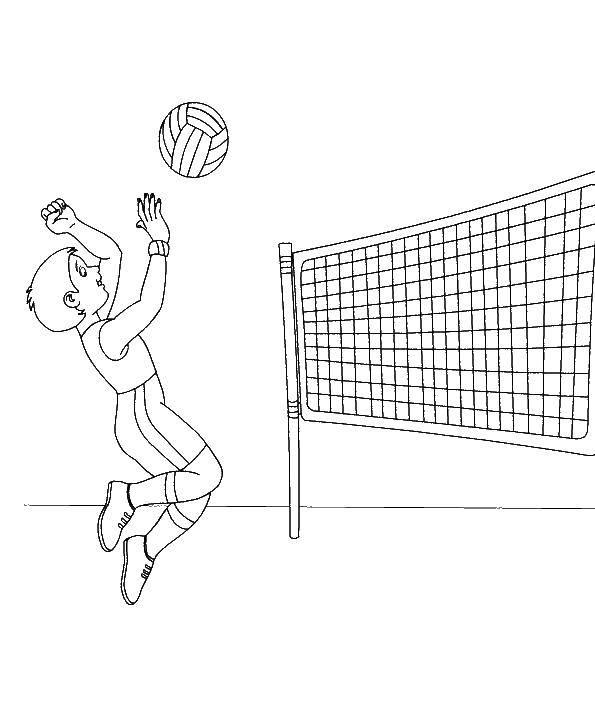 Раскраска волейбол Скачать ,Спорт, волейбол, мяч,.  Распечатать