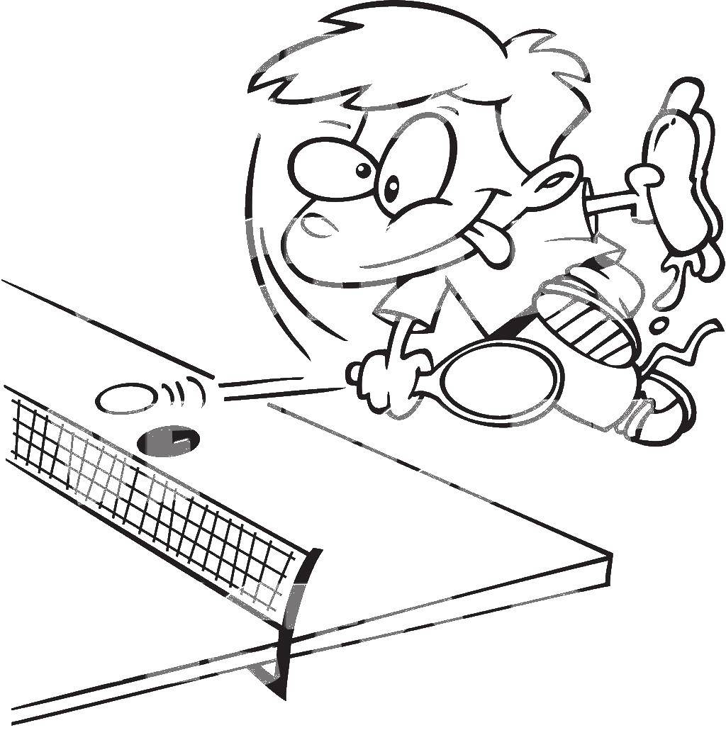 Раскраска теннис Скачать Животные, зайчик.  Распечатать ,кролик,
