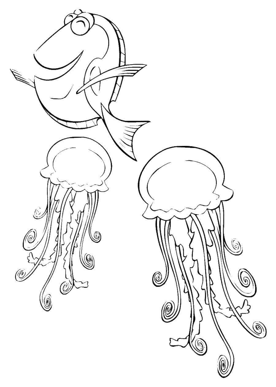 Раскраска медуза Скачать поросенок, контур, ушки, хвостик.  Распечатать ,Контур свиньи для вырезания,