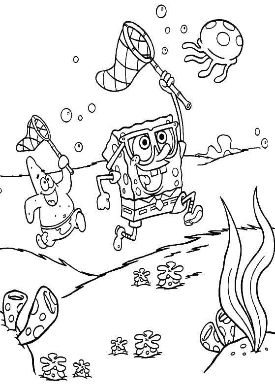 Раскраска  Скачать ,Зомби против растений, игра,.  Распечатать