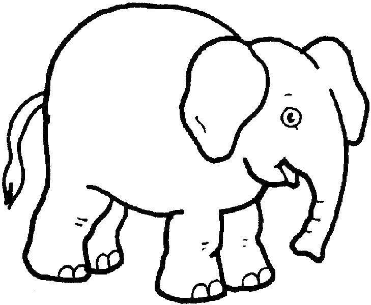 Раскраска Слоник Скачать Животные, слоненок.  Распечатать ,Животные,