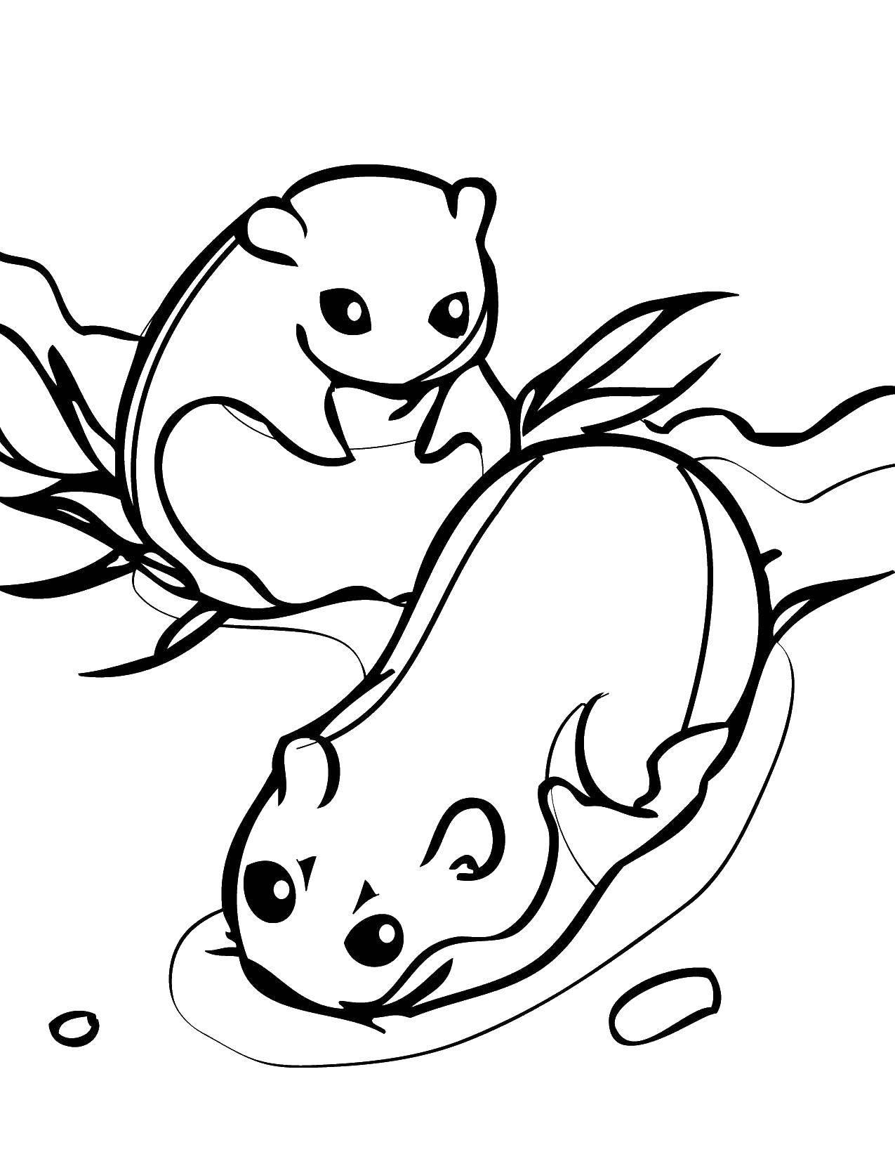 Раскраска  Скачать кунг фу панда, Мастер Обезьяна.  Распечатать ,кунг фу панда,