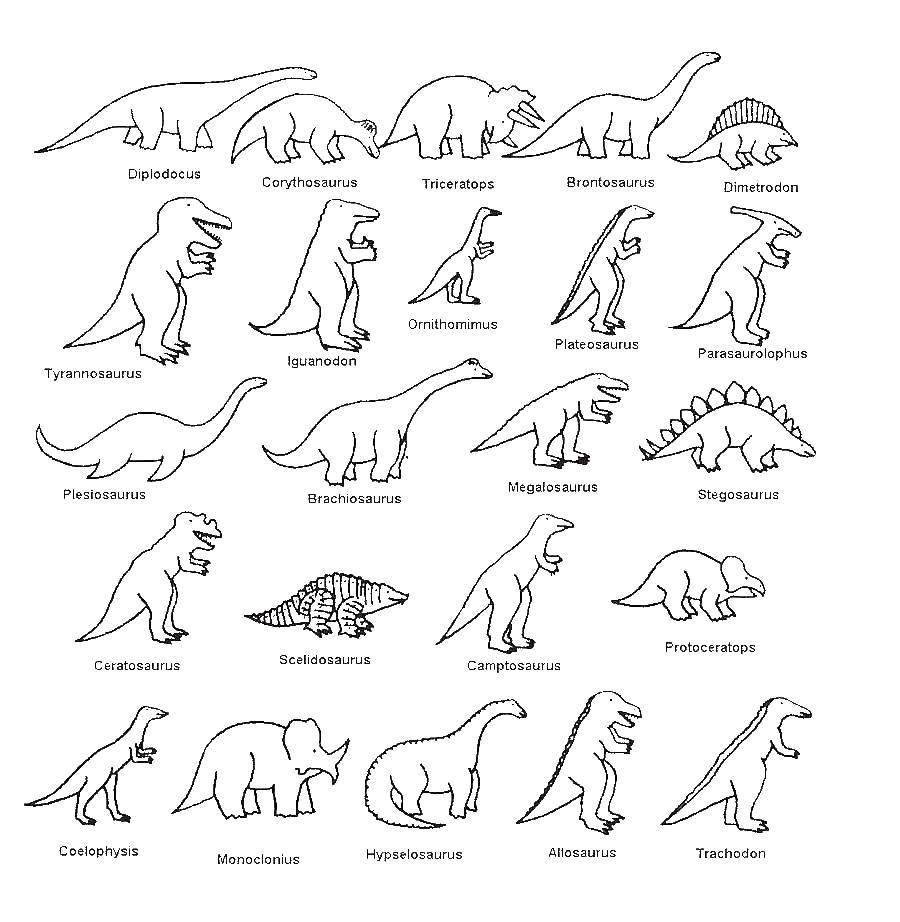 Раскраска Названия динозавров Скачать ,Динозавры,.  Распечатать