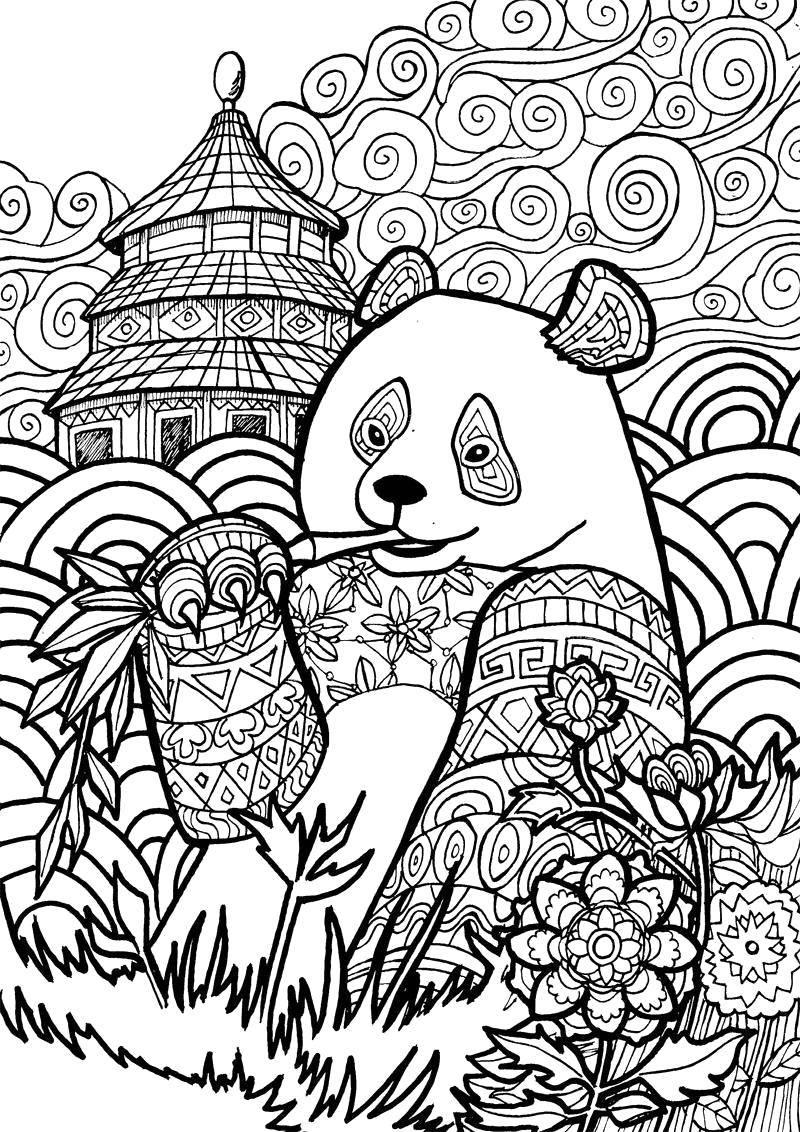 Раскраска Узорная панда Скачать Узоры, животные.  Распечатать ,Антистресс,