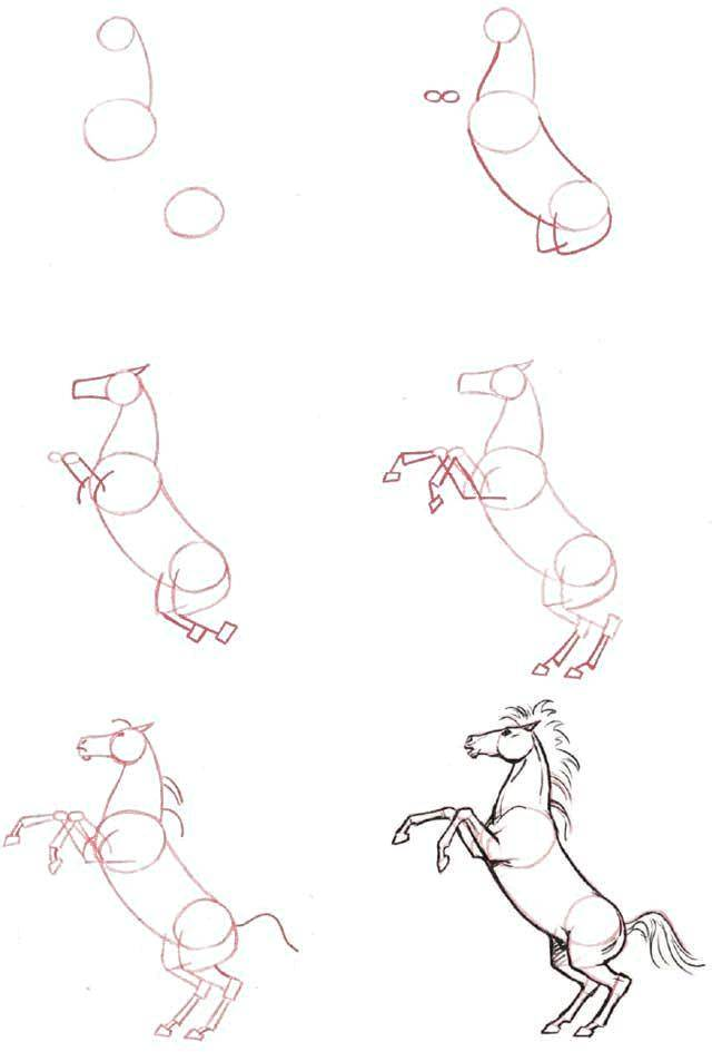 Раскраска Рисуем лошадь Скачать Пошаговый рисунок.  Распечатать ,как нарисовать пошагово,