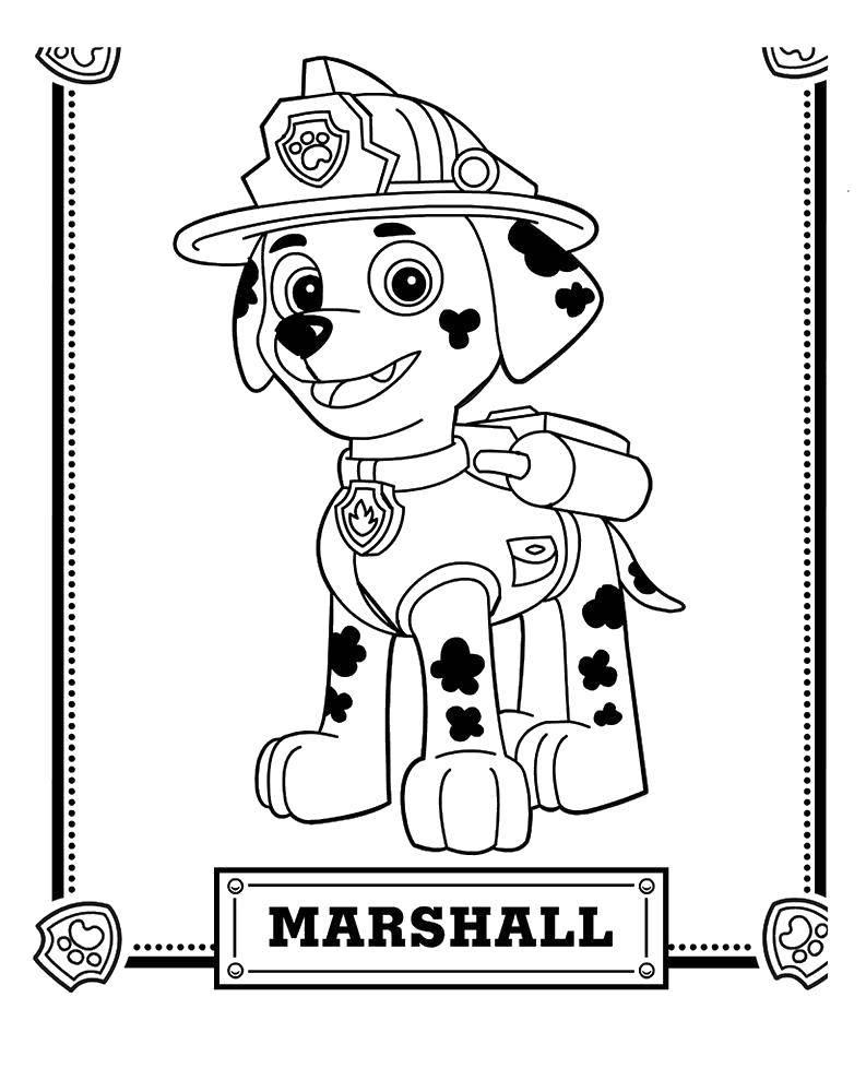 Раскраска щенячий патруль Скачать Алфавит, буквы, слова.  Распечатать ,азбука,