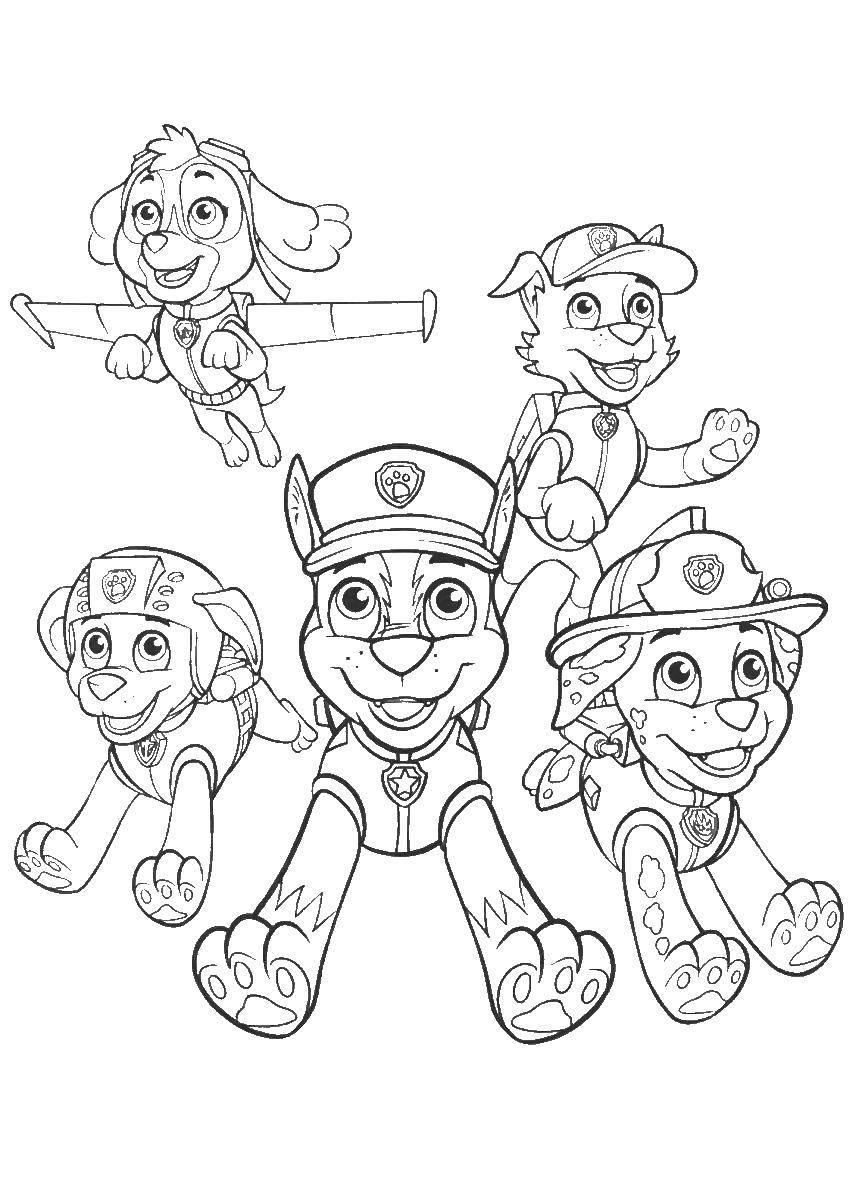 Раскраска щенячий патруль Скачать Персонаж из мультфильма, Бен Тен.  Распечатать ,Персонаж из мультфильма,