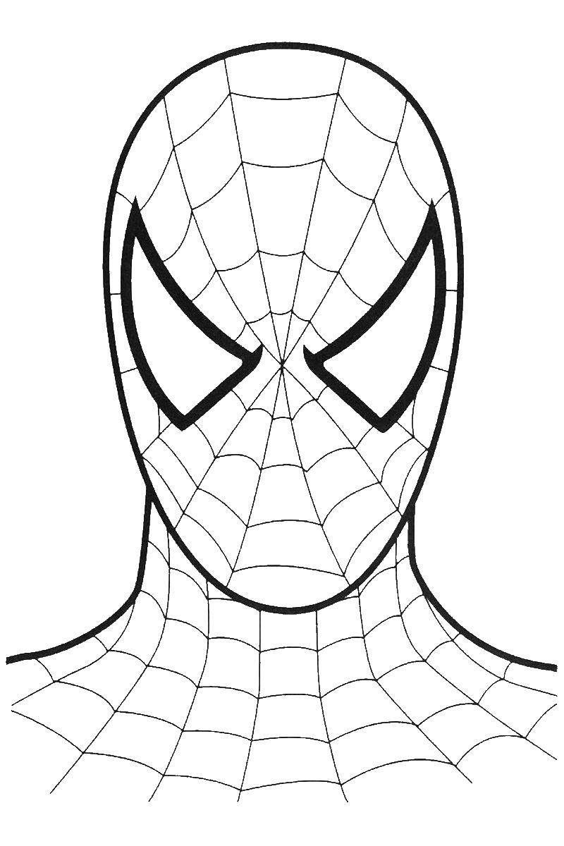 Раскраска человек паук Скачать ,одежда, платье, звери,.  Распечатать