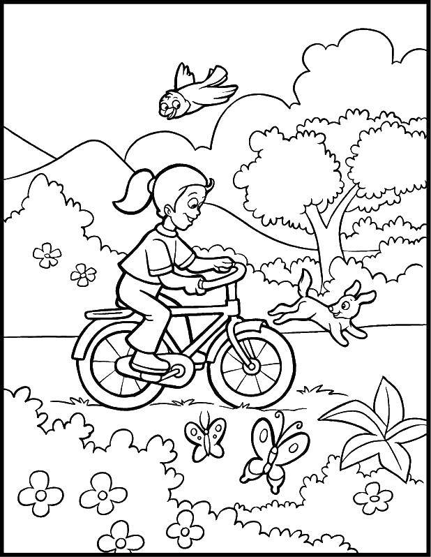 Раскраска раскраски для девочек Скачать Антистресс.  Распечатать ,раскраски антистресс,