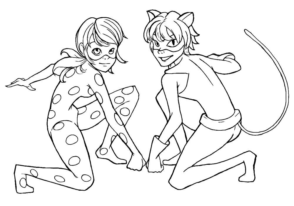 Раскраска леди баг кот Скачать ,Персонаж из мультфильма,.  Распечатать