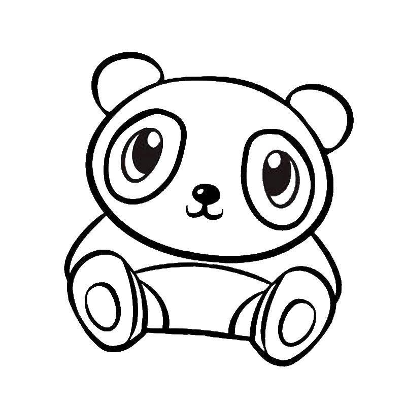 Раскраска Маленький панда Скачать панда.  Распечатать ,животные,