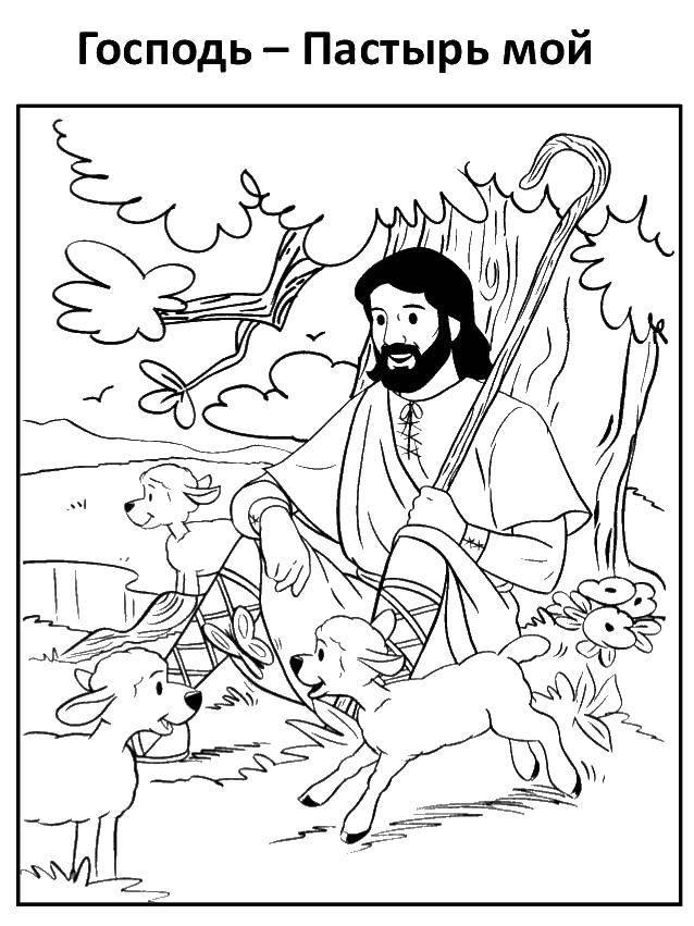 Раскраска Бог и животные Скачать бог, животные.  Распечатать ,раскраски,